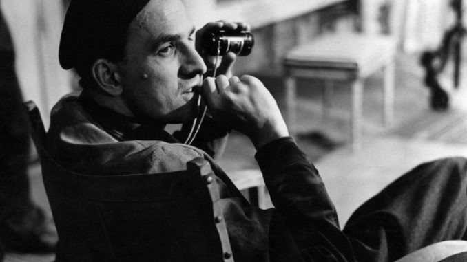 bergman-a-year-in-a-life-678×381